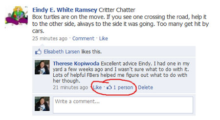 Facebook introduces Like button for comments